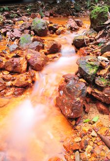Free Rivulet Stock Photography - 4882642