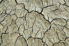 Free Cracked Land Stock Photography - 4882902