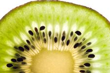 Free Sliced Kiwi. Royalty Free Stock Photo - 4883925