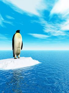 Free Penguin Royalty Free Stock Photography - 4884587
