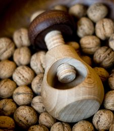 Free STILL LIFE With Nuts Royalty Free Stock Images - 4887039