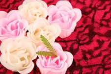 Free Soap Flowers Royalty Free Stock Photo - 4887325
