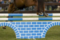 Free Horse Jumping 036 Royalty Free Stock Photography - 4894957