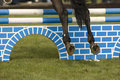 Free Horse Jumping 005 Royalty Free Stock Photo - 4894975