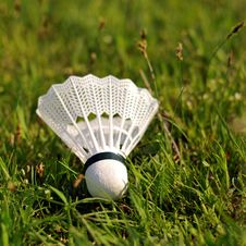 Free Badminton Shuttlecock Royalty Free Stock Photos - 4890438