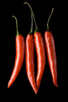 Four Red Chili  Peppers Royalty Free Stock Photo