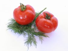 Free Two Tomatoes Stock Image - 4892671