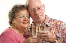Happy Senior Couple Toasting Stock Photography
