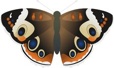 Free Butterfly Stock Photography - 4897942