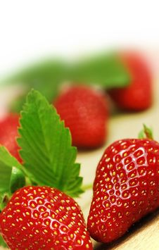 Free Fresh Strawberries Stock Images - 4897954