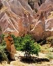Free Rose Mountains Stock Photo - 496100