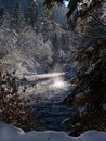 Free Misty River Stock Photo - 497010