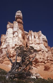 Free Bryce Canyon Stock Photo - 491030