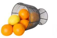 Free Citrus Fruit Royalty Free Stock Photos - 497768