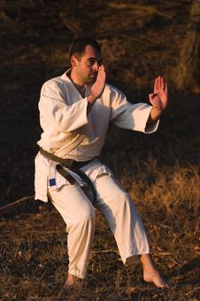 Free Martial Arts Stock Photography - 4900272