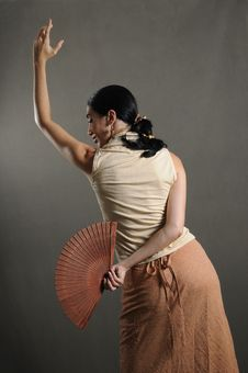 Free Passionate Flamenco Dancer Royalty Free Stock Photo - 4900985