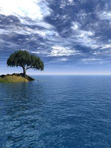 Free Tree_Sea Stock Photo - 4905090