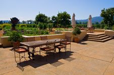 Free Vineyard In California Stock Photography - 4905172