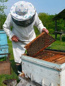 Free Beekeeper 11 Stock Images - 4906634