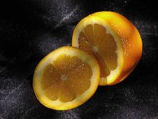 Free Orange Stock Images - 4908434