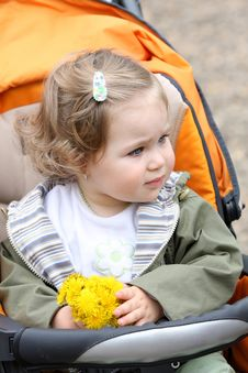 Girl With Flower In A Pram Royalty Free Stock Image
