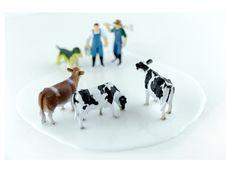 Free Milk Royalty Free Stock Image - 49082036