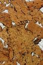 Free Cork Texture Royalty Free Stock Image - 4911806