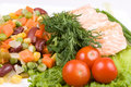 Free Stake From A Salmon With Vegetables Royalty Free Stock Image - 4916126