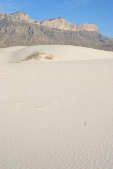 Free Gypsum Sand Dunes Stock Photography - 4910352