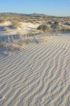 Free Gypsum Sand Dunes Stock Photography - 4910462