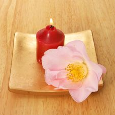 Free Red Candle And Camellia Stock Images - 4910884