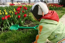 Free Little Boy With Spade Stock Photos - 4911223