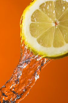 Free Lemon Slice Stock Photos - 4911463