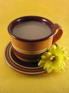 Free A Cup Of Tea Stock Photos - 4911533
