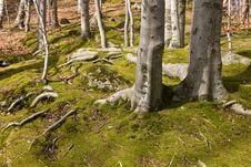 Free Landscapes In Karkonosze Mountains, Poland Stock Photos - 4917053