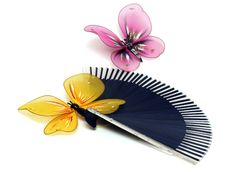 Free Butterfly On A Fan Stock Images - 4918024