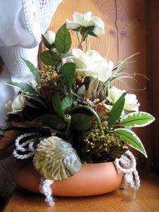 Free Flowers Stock Photo - 4919890