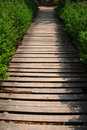 Free The Wood Path In The Bush Stock Photos - 4921123