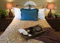 Free Luxury Home Bedroom. Royalty Free Stock Photos - 4924668