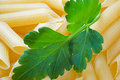 Free Macaroni With A Parsley Leaf Royalty Free Stock Images - 4929439