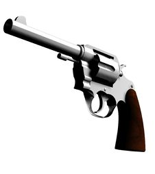 Free The Gun 2 Royalty Free Stock Photos - 4921338