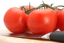 Free Tomatoes Royalty Free Stock Photography - 4924807