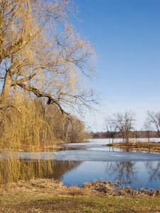 Spring Thaw Royalty Free Stock Photo