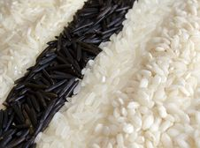 Free Rice Background Royalty Free Stock Photo - 4925895
