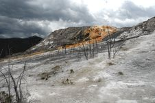 Free Mammoth Hot Springs Stock Photo - 4927640