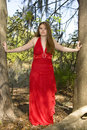 Free Beautiful Woman In Red Dress Stock Photography - 4932192