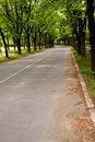 Free Road To Park Royalty Free Stock Photo - 4937405