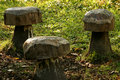 Free Wooden Toad Stool Seats Stock Image - 4938101