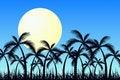 Free Tropic Sunrise Royalty Free Stock Image - 4939976