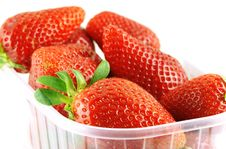 Close Up Of A Container Full Of Fresh Strawberry Stock Image